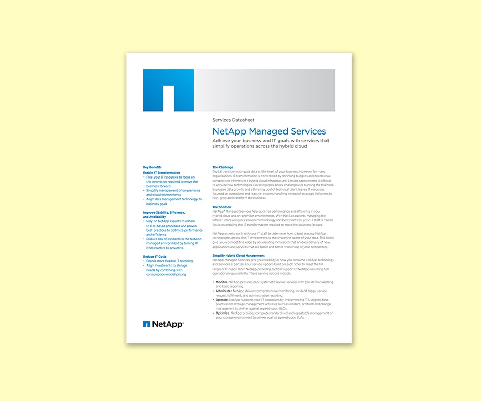 NetApp article with the title NetApp Managed Services