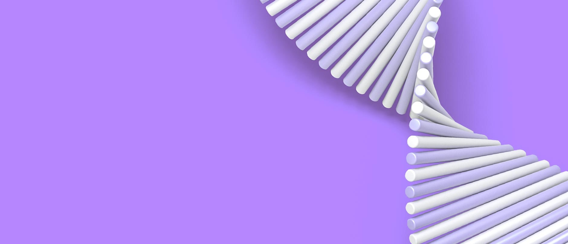 Purple and white lines creating the shape if DNA on a purple background